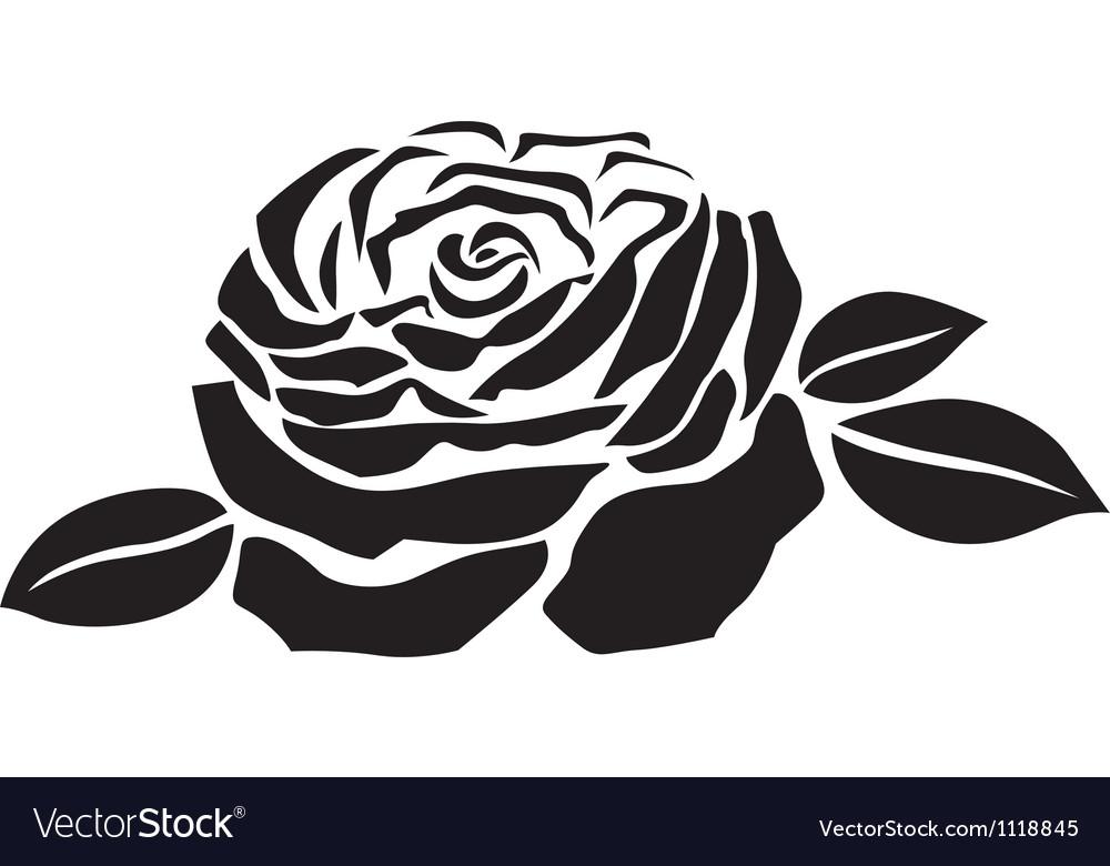Rose flower vector | Price: 1 Credit (USD $1)