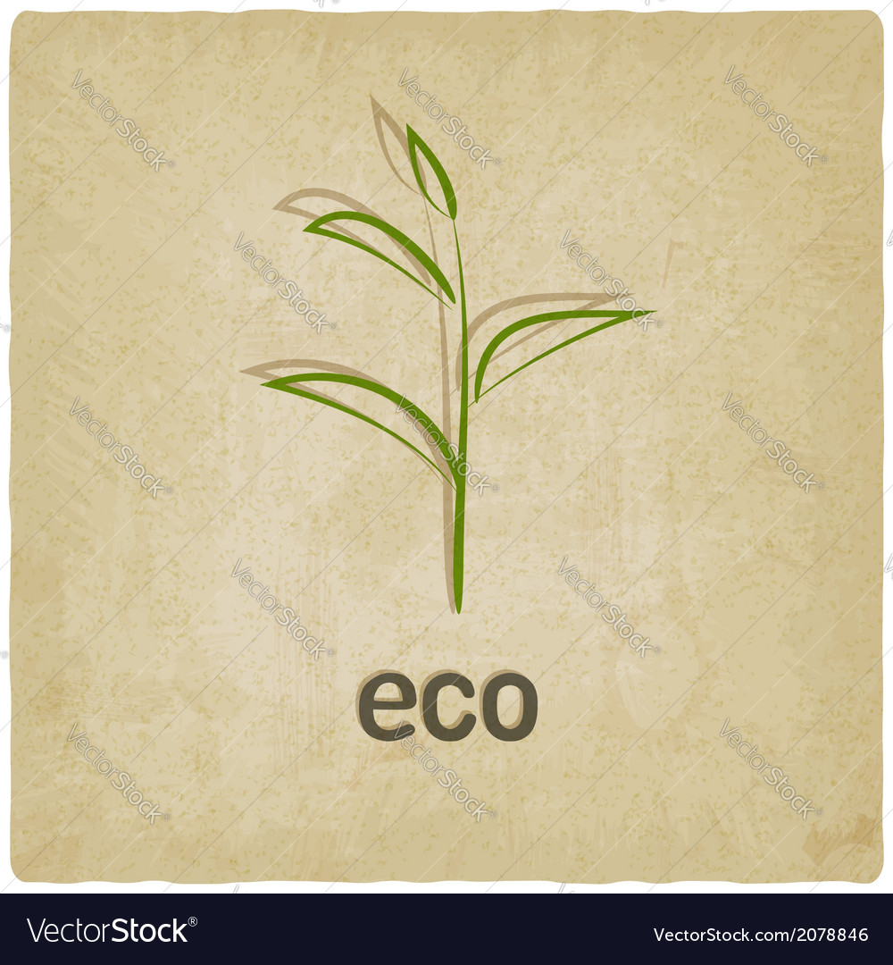 Eco old background vector | Price: 1 Credit (USD $1)