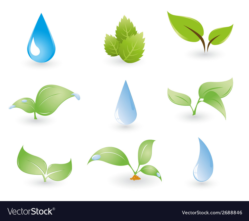 Leaf and water drops on a blue background vector | Price: 1 Credit (USD $1)
