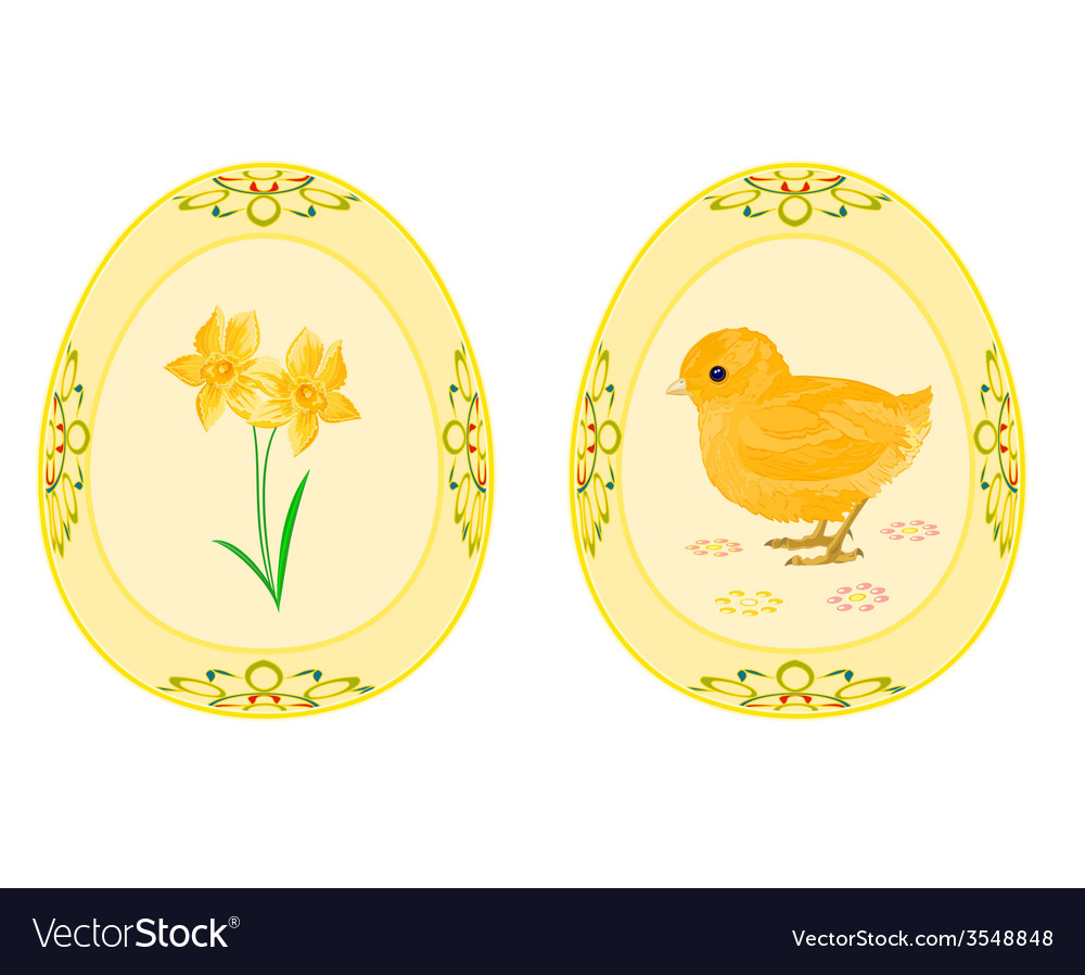 Easter eggs theme daffodil and baby chicken vector | Price: 1 Credit (USD $1)