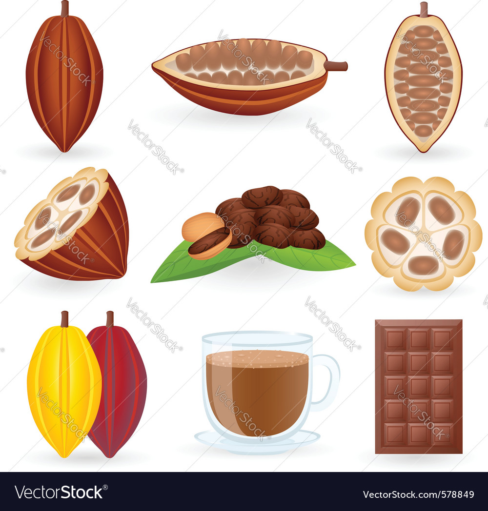 Cocoa icon vector | Price: 3 Credit (USD $3)