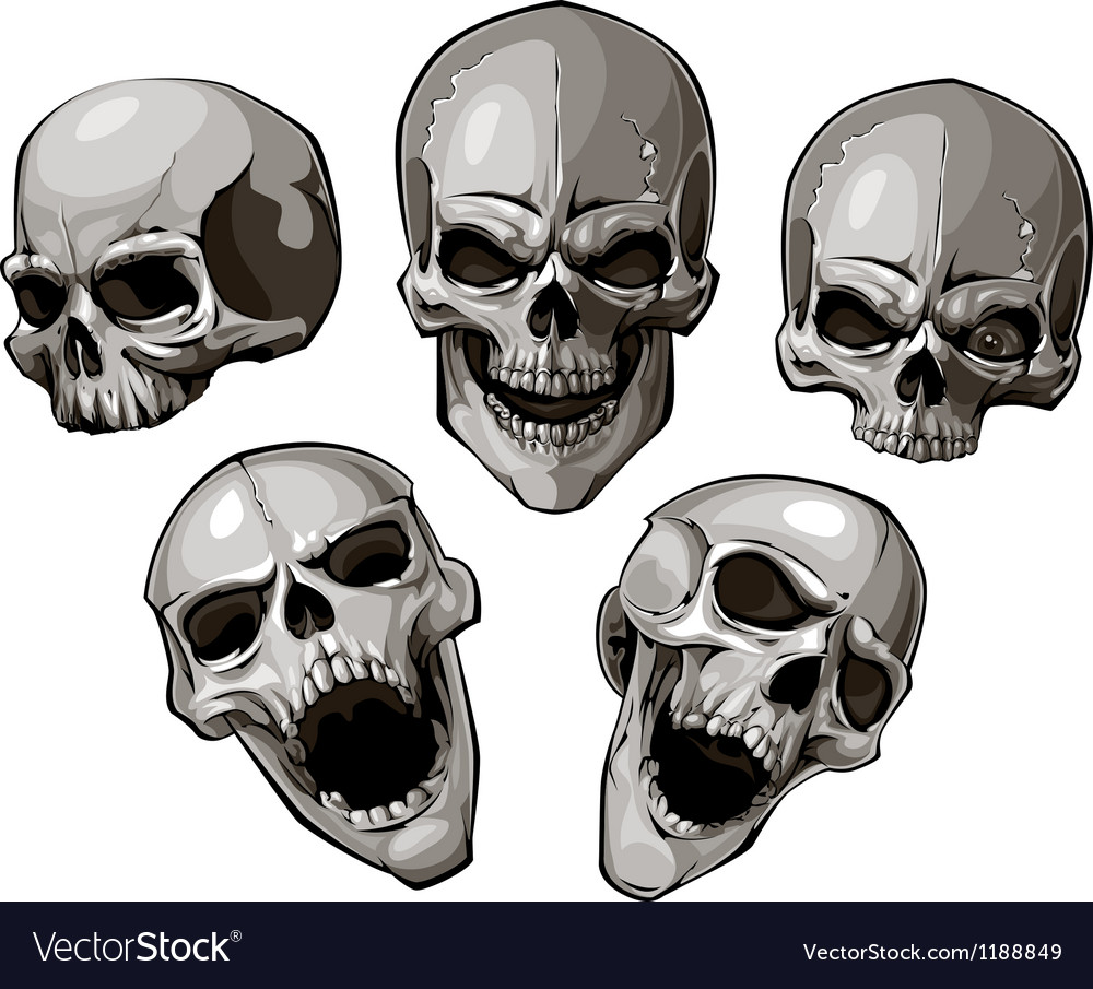Skulls 4 vector | Price: 3 Credit (USD $3)