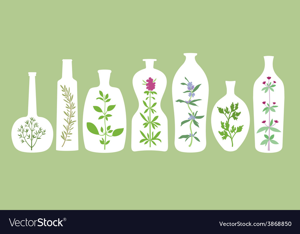 Aromatic plants and bottles silhouettes vector | Price: 1 Credit (USD $1)