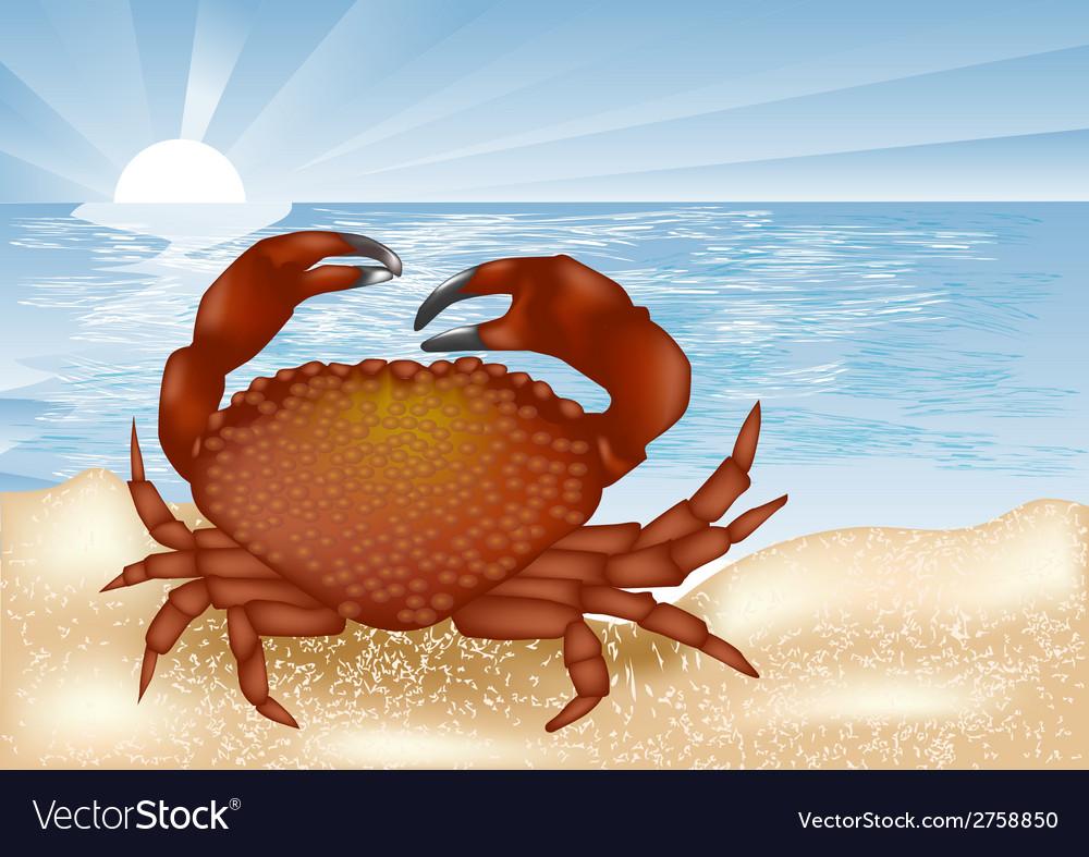 Crab at sea vector | Price: 1 Credit (USD $1)