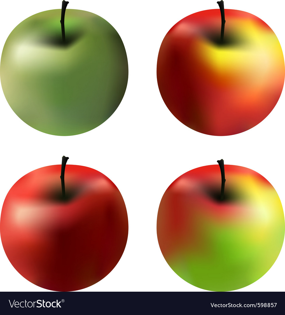 Gradient apples vector | Price: 1 Credit (USD $1)