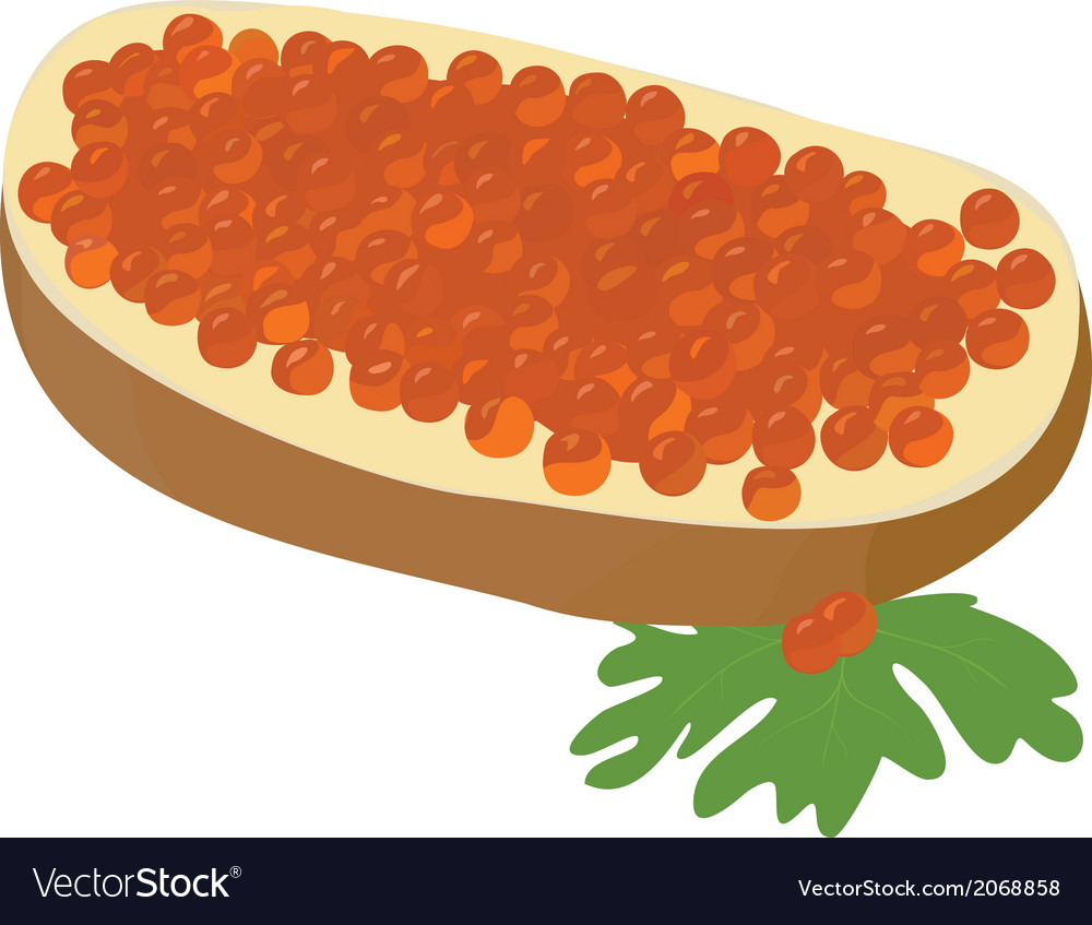 Caviare sandwich vector | Price: 1 Credit (USD $1)