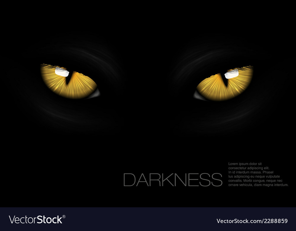 Cat eyes in darkness vector | Price: 1 Credit (USD $1)
