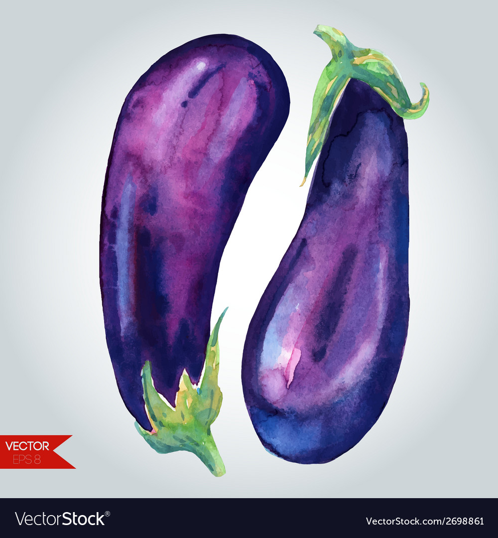 Glossy eggplants vector | Price: 1 Credit (USD $1)