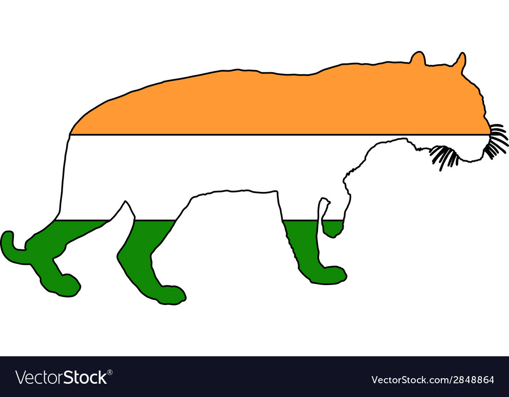 India tiger vector | Price: 1 Credit (USD $1)