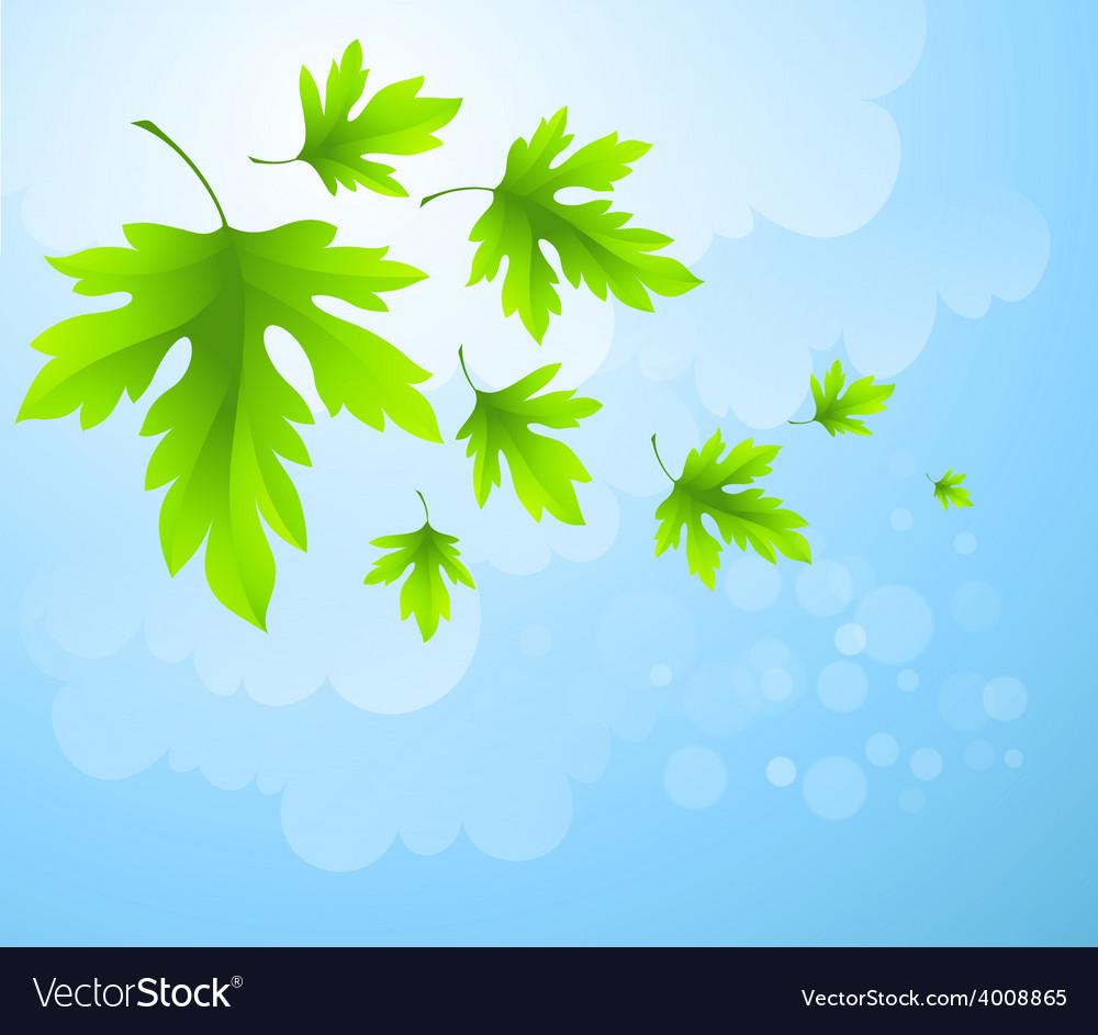 Spring fresh green leaves vector | Price: 1 Credit (USD $1)