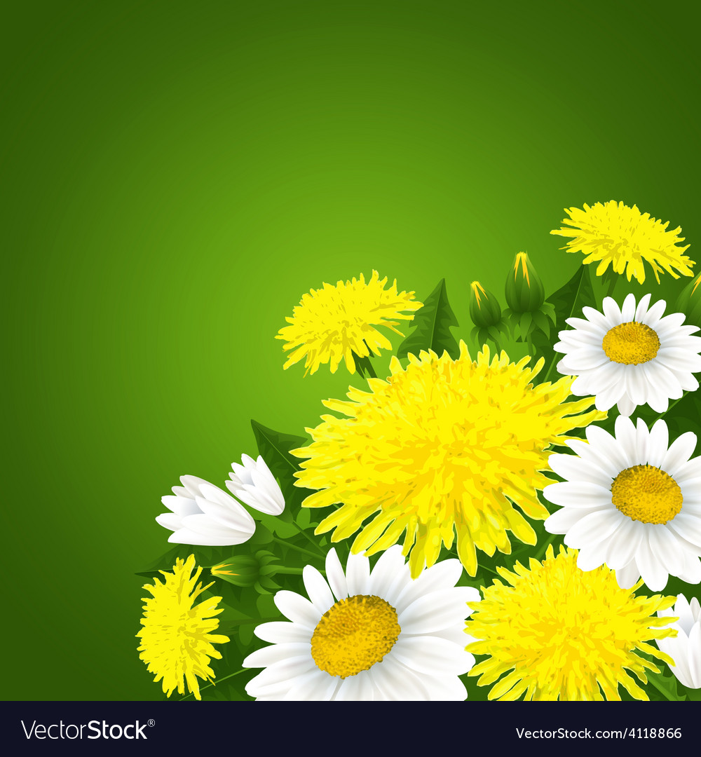 Spring flowers vector | Price: 3 Credit (USD $3)
