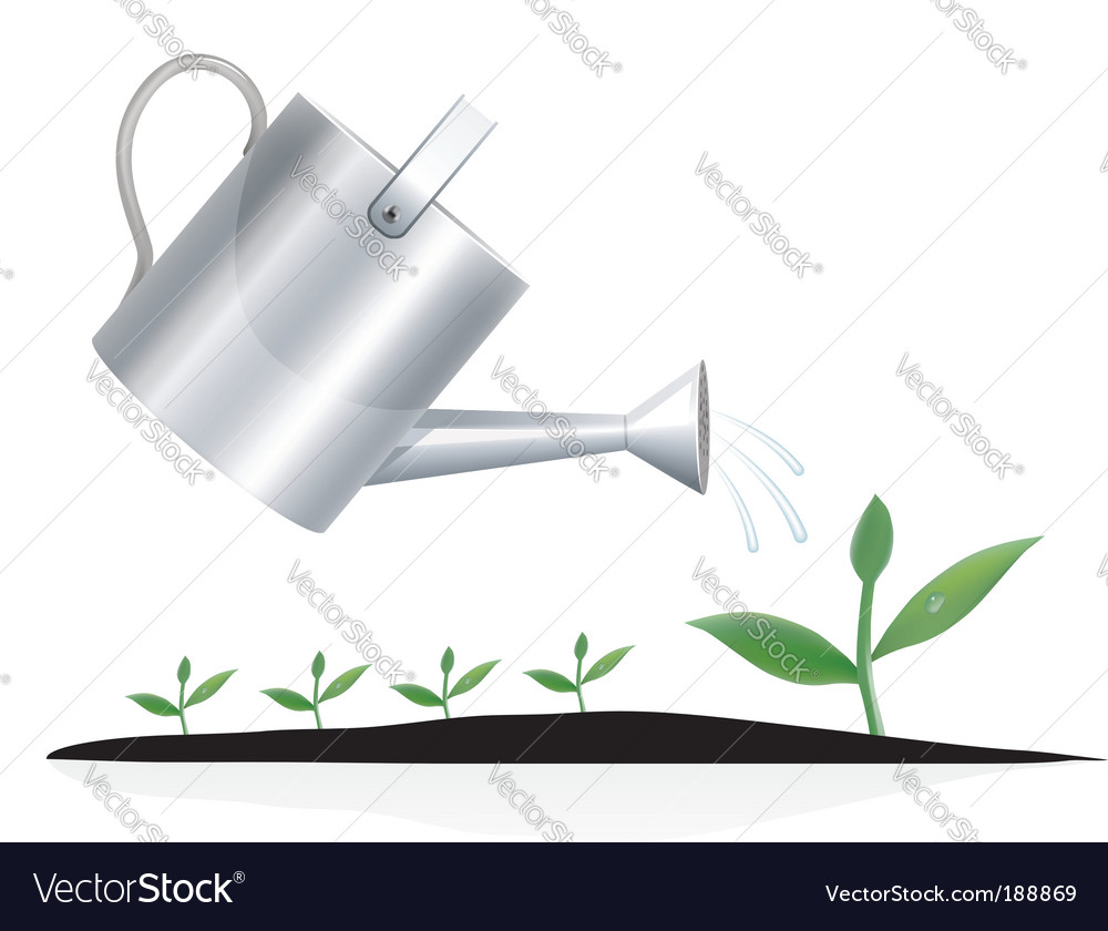 Young plant with watering can vector | Price: 1 Credit (USD $1)