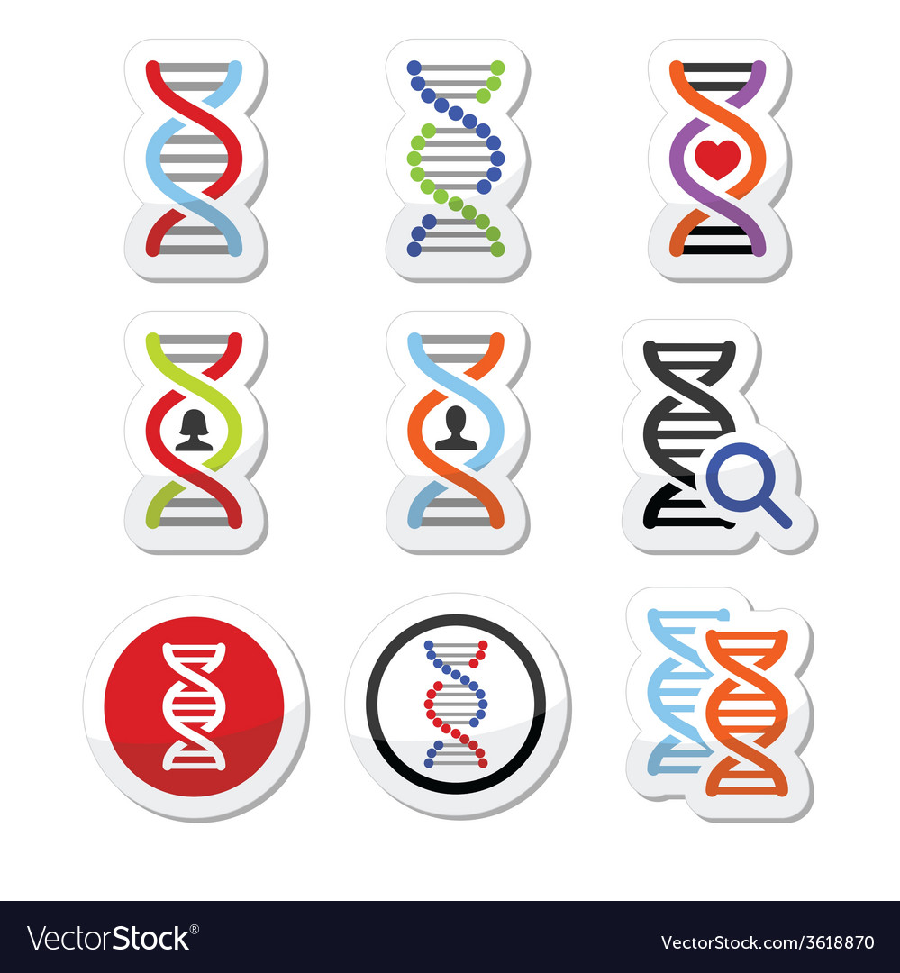 Dna genetics icons set vector | Price: 1 Credit (USD $1)