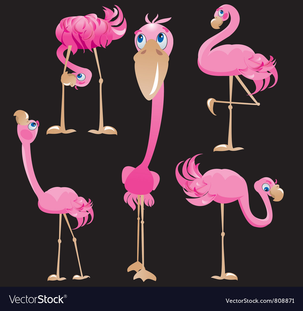 Flamingos cartoons vector | Price: 3 Credit (USD $3)