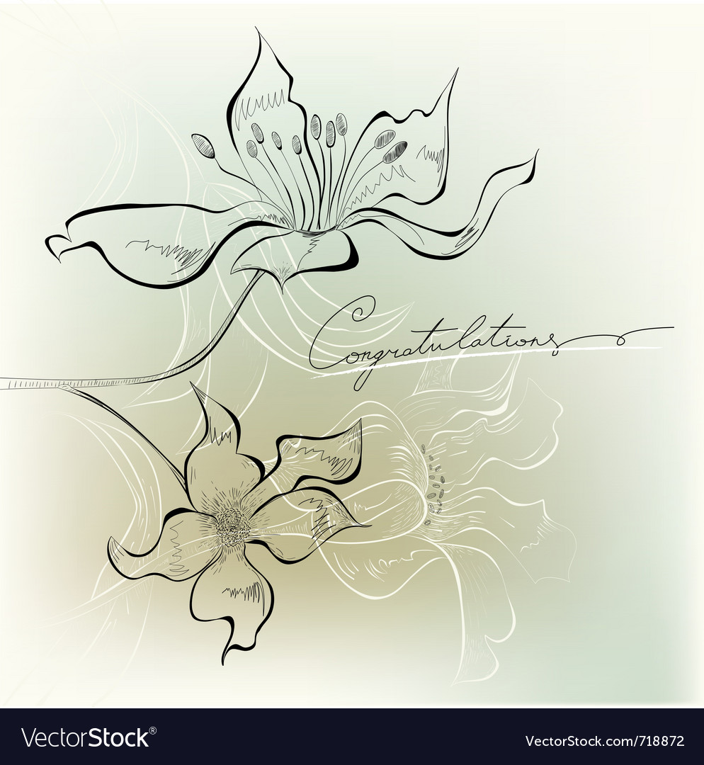 Congratulation card vector | Price: 1 Credit (USD $1)