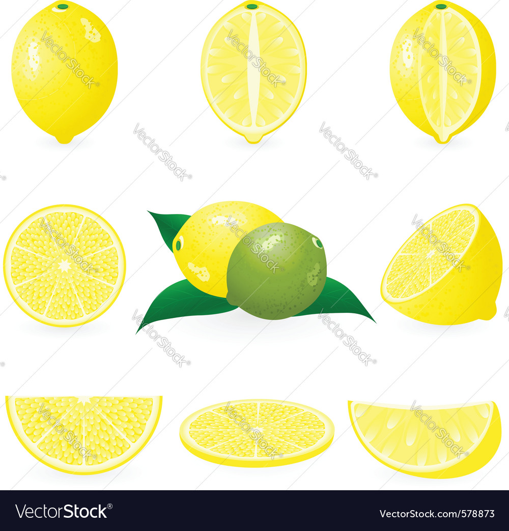 Lemon icons vector | Price: 1 Credit (USD $1)
