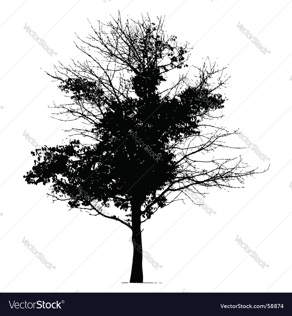 Tree silhouette black vector | Price: 1 Credit (USD $1)