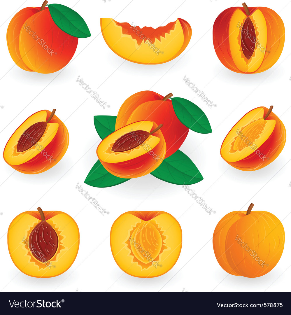 Icon set peach vector | Price: 1 Credit (USD $1)