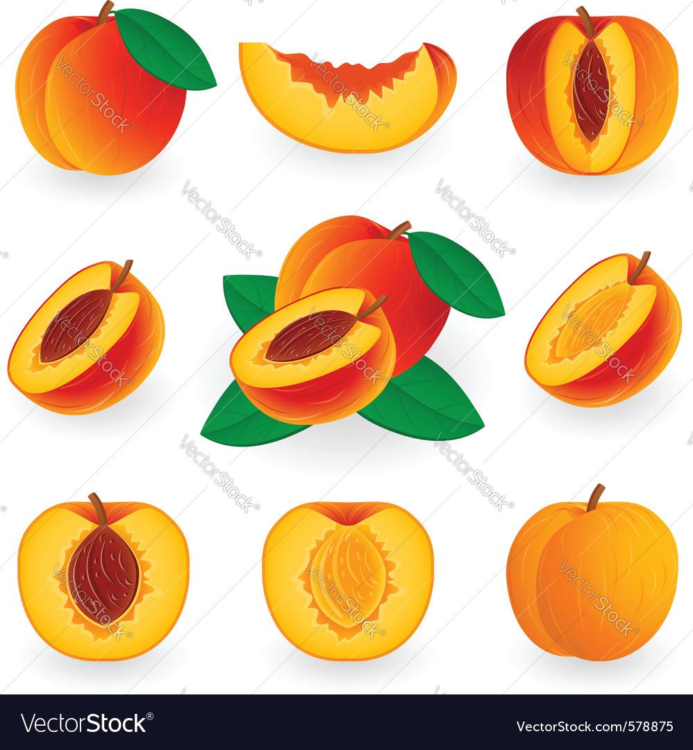 Icon set peach vector | Price: 1 Credit (USD $1)
