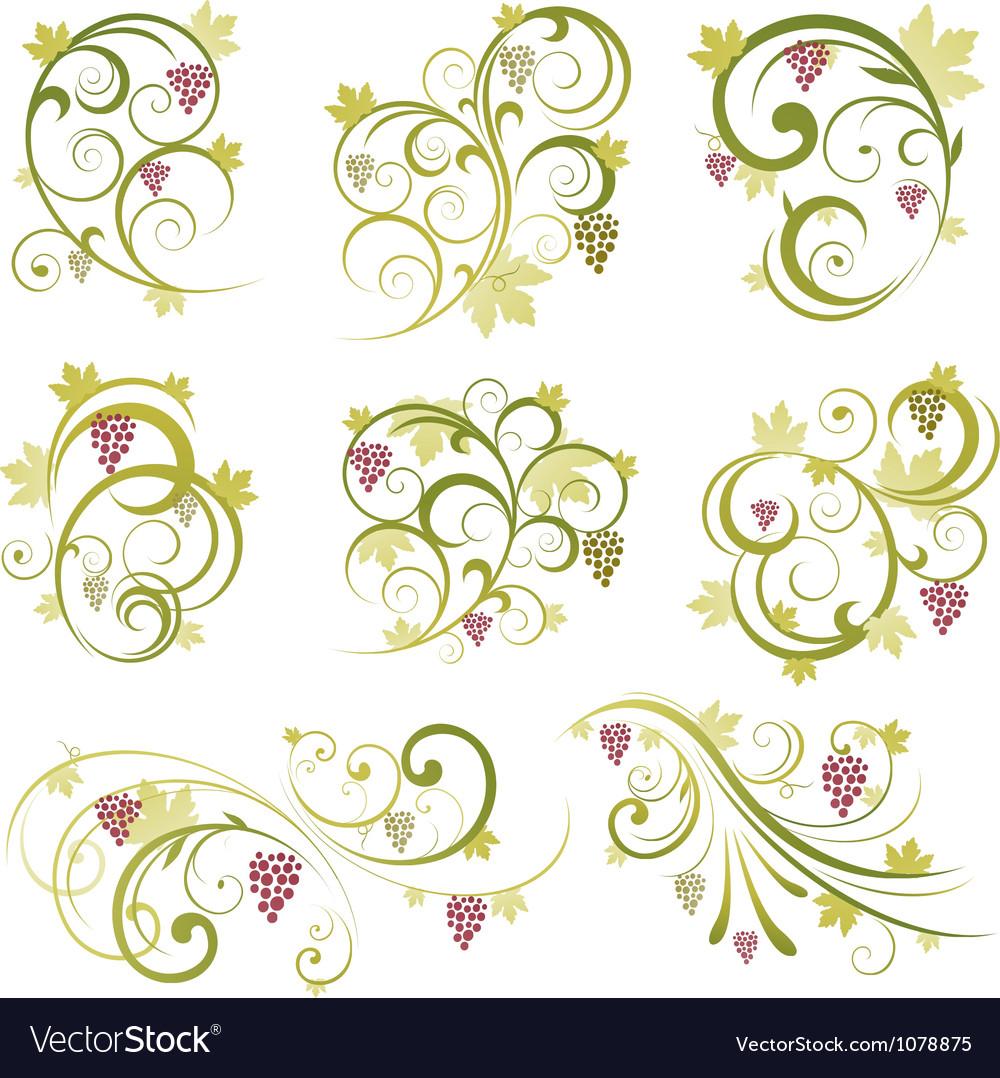 Set of wine grapes design elements vector | Price: 1 Credit (USD $1)