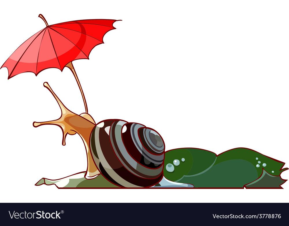 Cartoon snail under the umbrella vector | Price: 3 Credit (USD $3)