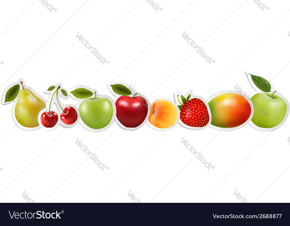 Set of healthy food fruit vector | Price: 1 Credit (USD $1)