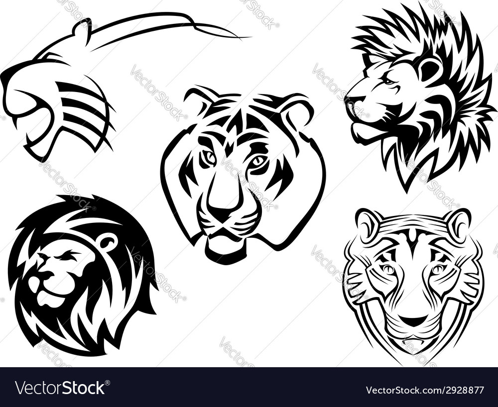 Wild lions tigers and panthers vector | Price: 1 Credit (USD $1)