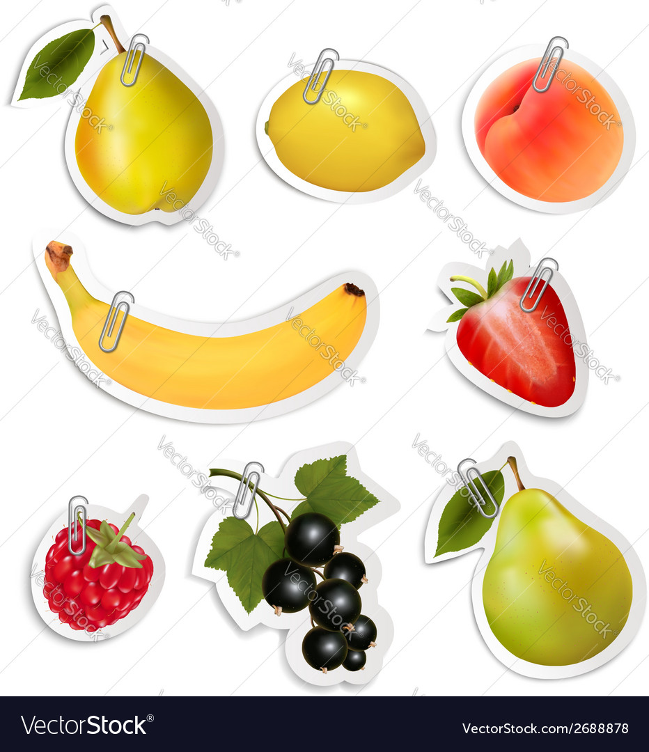 Set of flat fruit stickers with paper clips vector | Price: 1 Credit (USD $1)