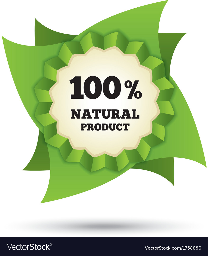 Eco icon green leaf  natural bio food vector | Price: 1 Credit (USD $1)