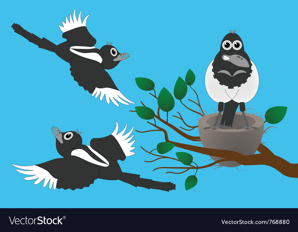 Magpies vector | Price: 1 Credit (USD $1)