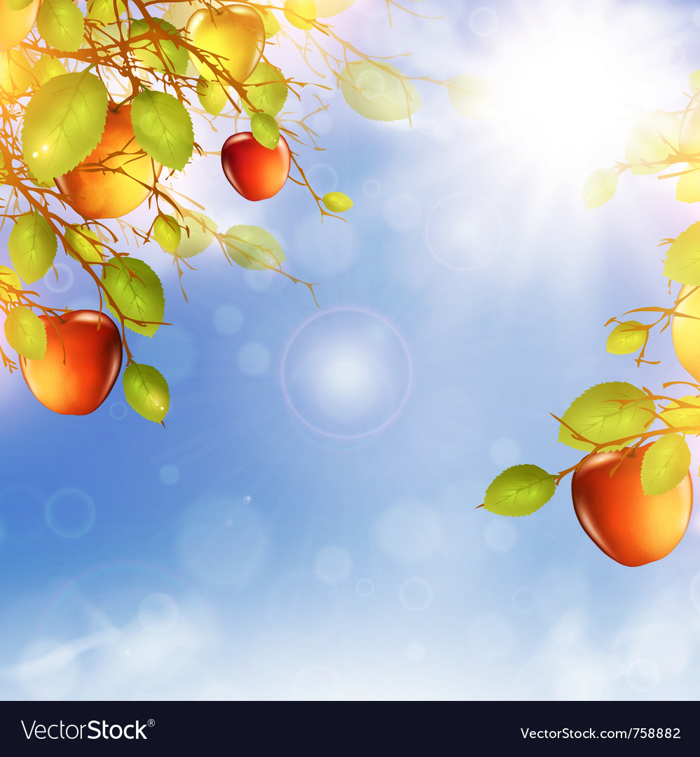 Apple tree over blue sky vector | Price: 3 Credit (USD $3)