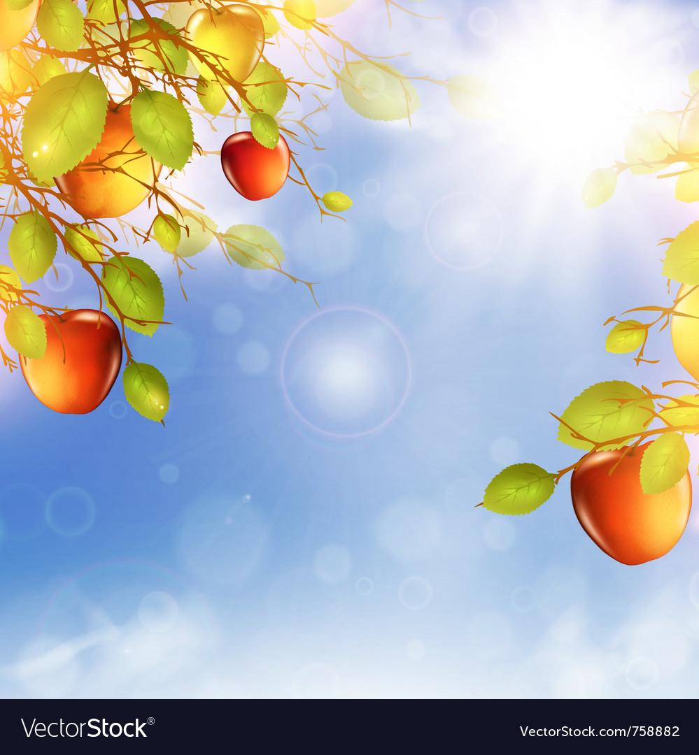 Apple tree over blue sky vector | Price: 3 Credit (USD $3)