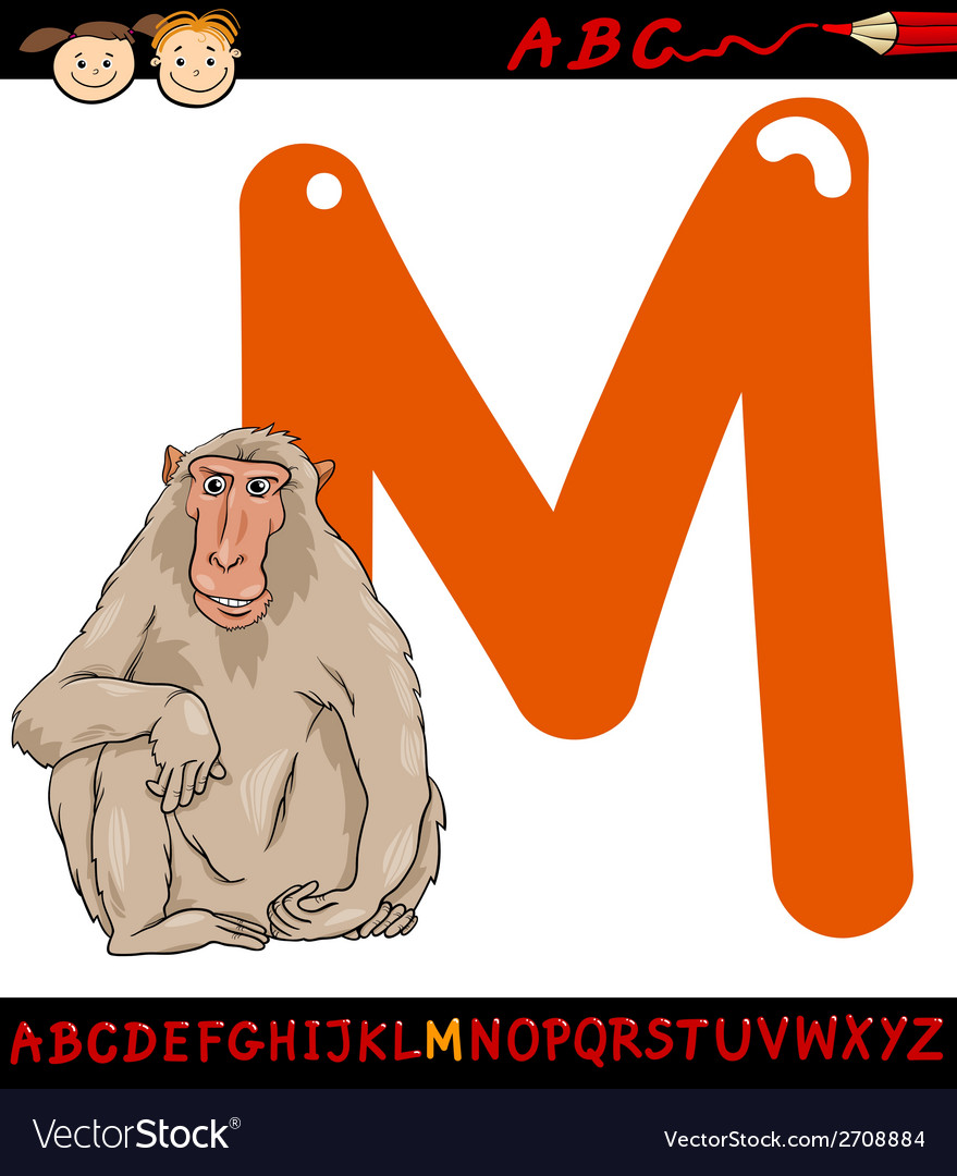 Letter m for macaque cartoon vector | Price: 1 Credit (USD $1)