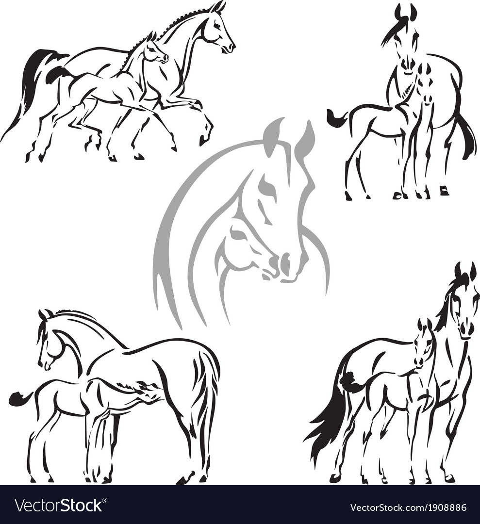Mares and foals vector | Price: 1 Credit (USD $1)