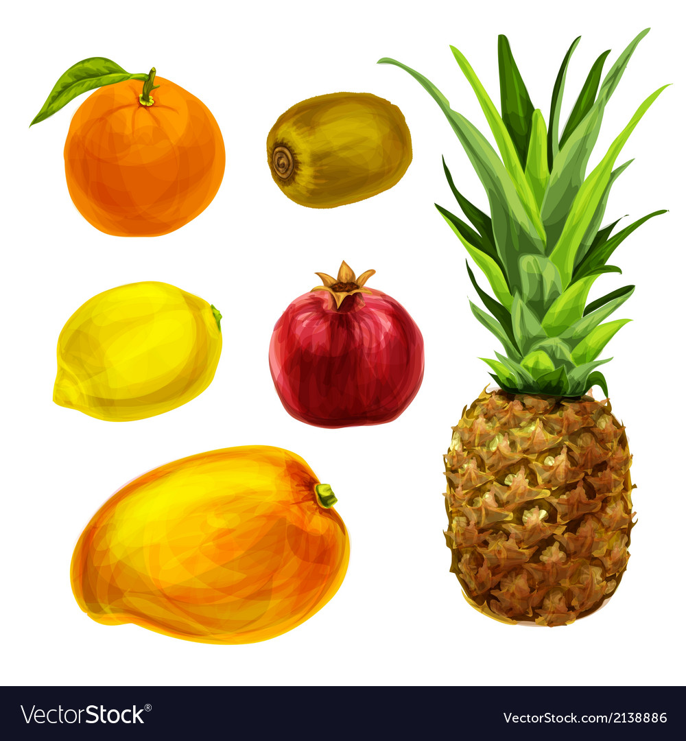 Tropical organic fruits collection vector | Price: 1 Credit (USD $1)