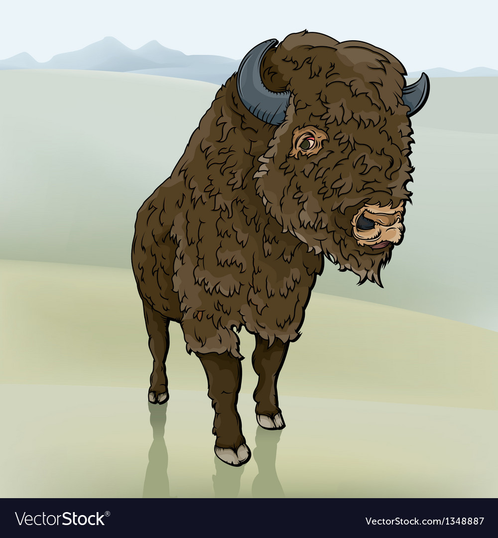 Buffalo vector | Price: 3 Credit (USD $3)