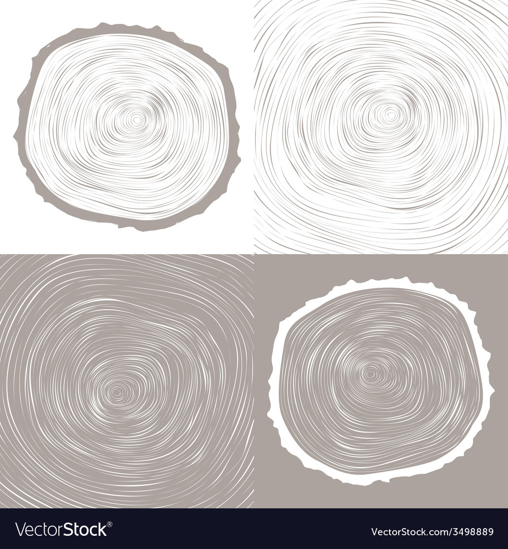 Tree wood slice natural years line circle ring vector | Price: 1 Credit (USD $1)