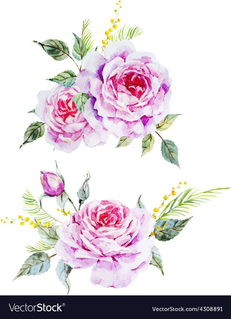 Nice roses vector | Price: 1 Credit (USD $1)