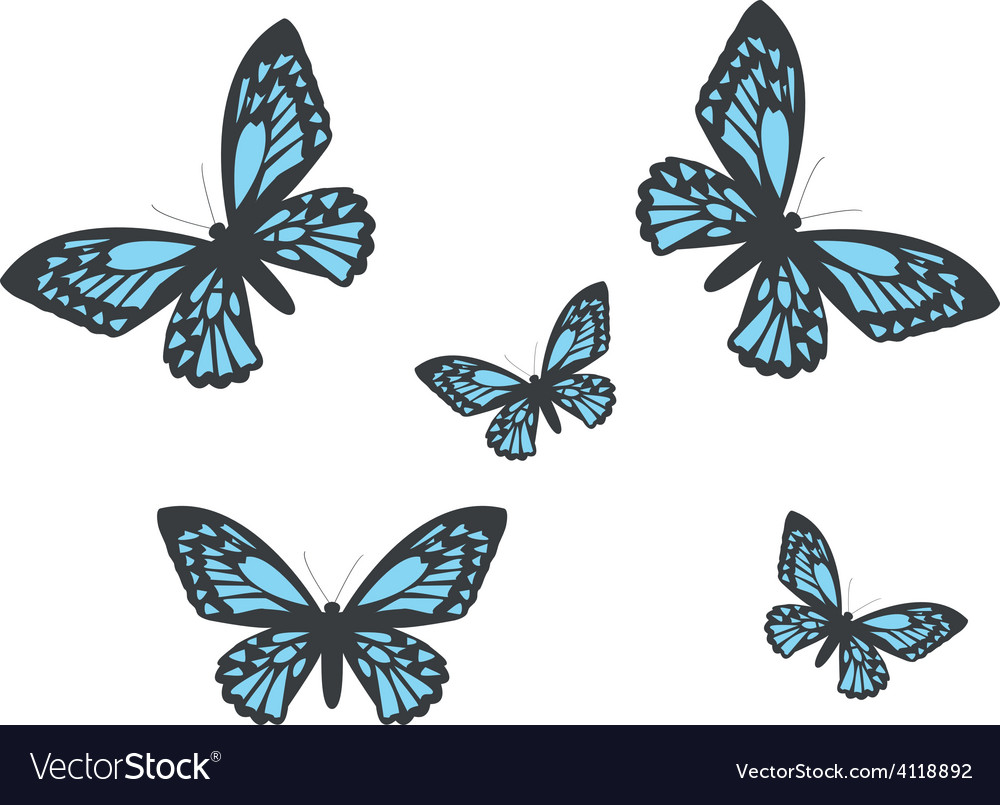 With realistic butterflies vector | Price: 1 Credit (USD $1)