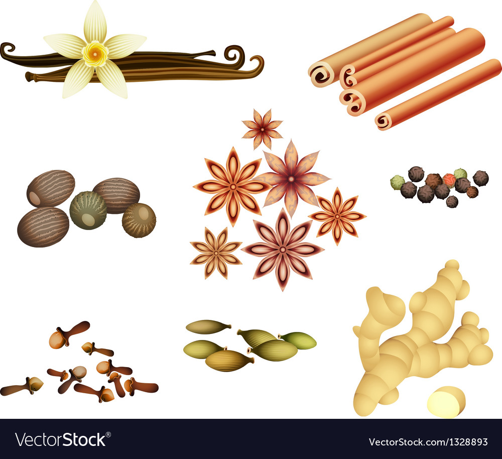 Collection of spices vector | Price: 1 Credit (USD $1)