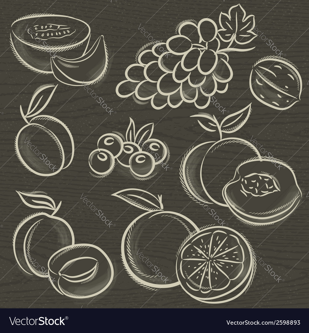 Set of fruits grapes melon apricot peach vector | Price: 1 Credit (USD $1)
