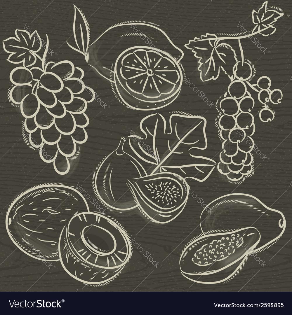 Set of fruits lemon grapes fig papaya coconut curr vector   Price: 1 Credit (USD $1)