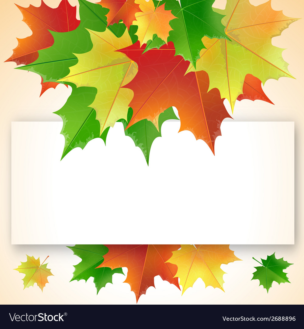 Colorful maple leaves on the greeting card vector   Price: 1 Credit (USD $1)