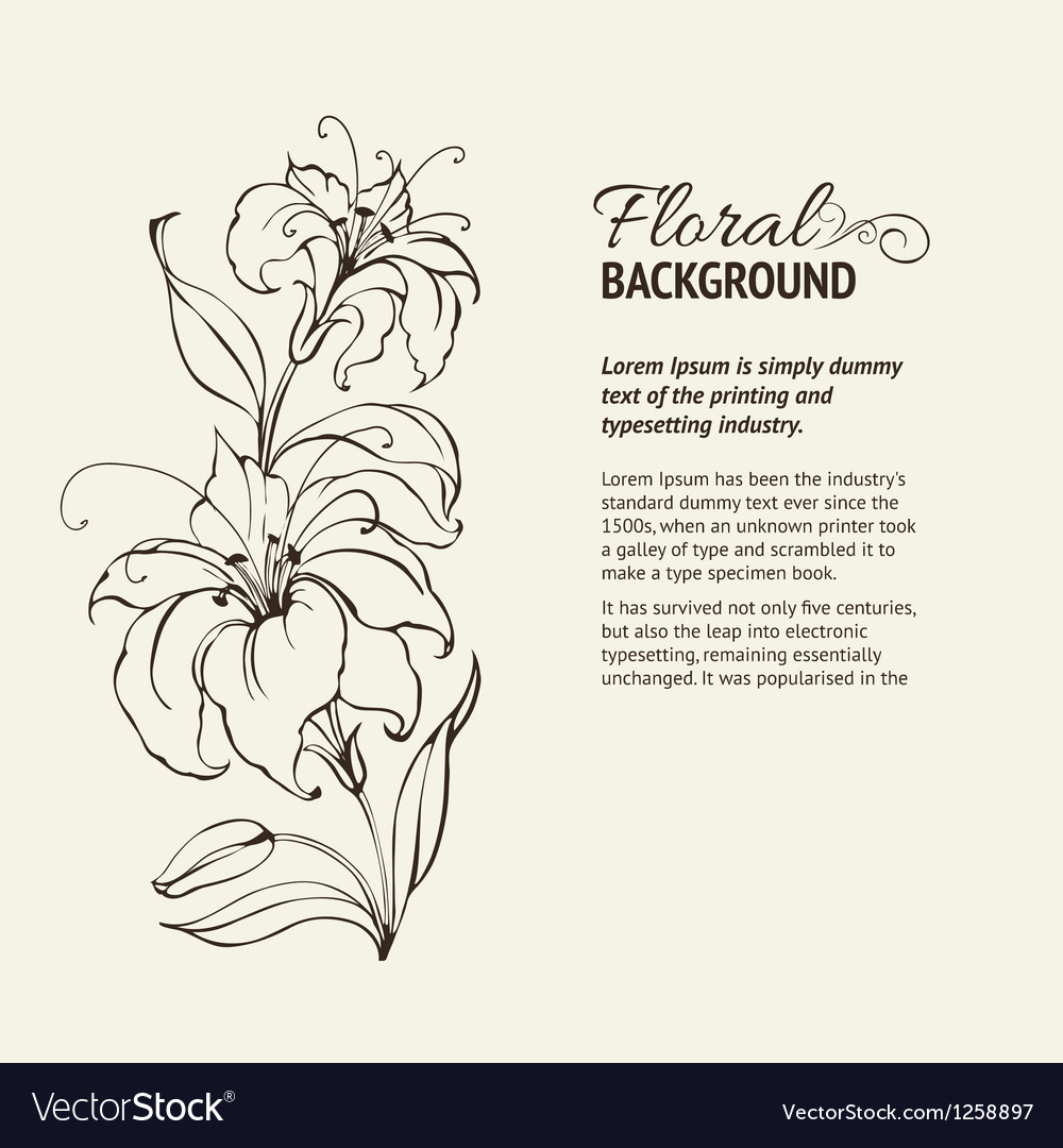 Blooming lilies vector | Price: 1 Credit (USD $1)