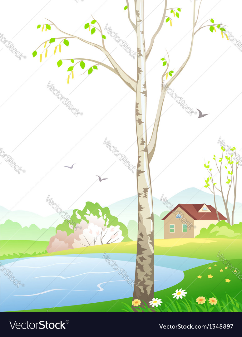 Spring birch vector | Price: 3 Credit (USD $3)
