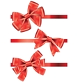 Set of different types of red satin ribbons with vector