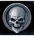 Skull in stone vector