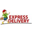 Delivery vector
