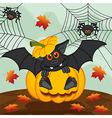 Halloween pumpkin bat vector