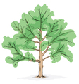 Big tree drawing vector